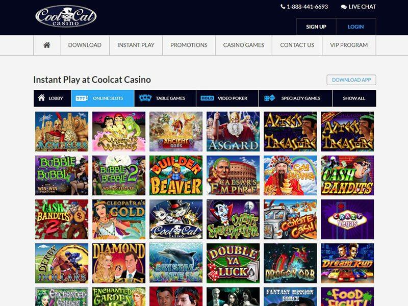 Cool Cat Casino Bonus Codes 100 No Deposit Bonus Aug 2020